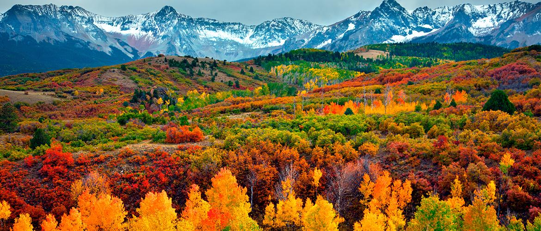 Fall-in-Aspen