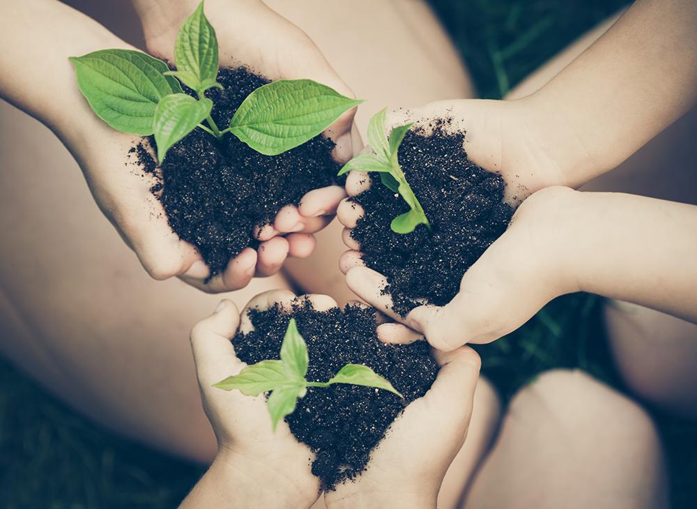 Celebrate Earth Day