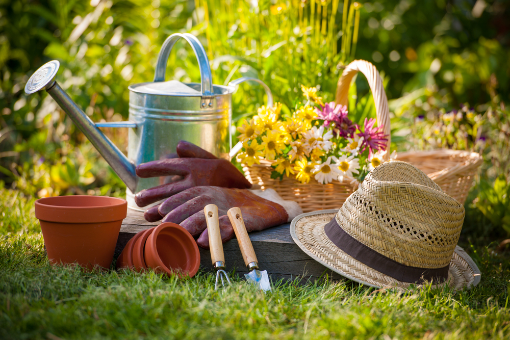 How To Get Your Flower Garden Ready For Summer