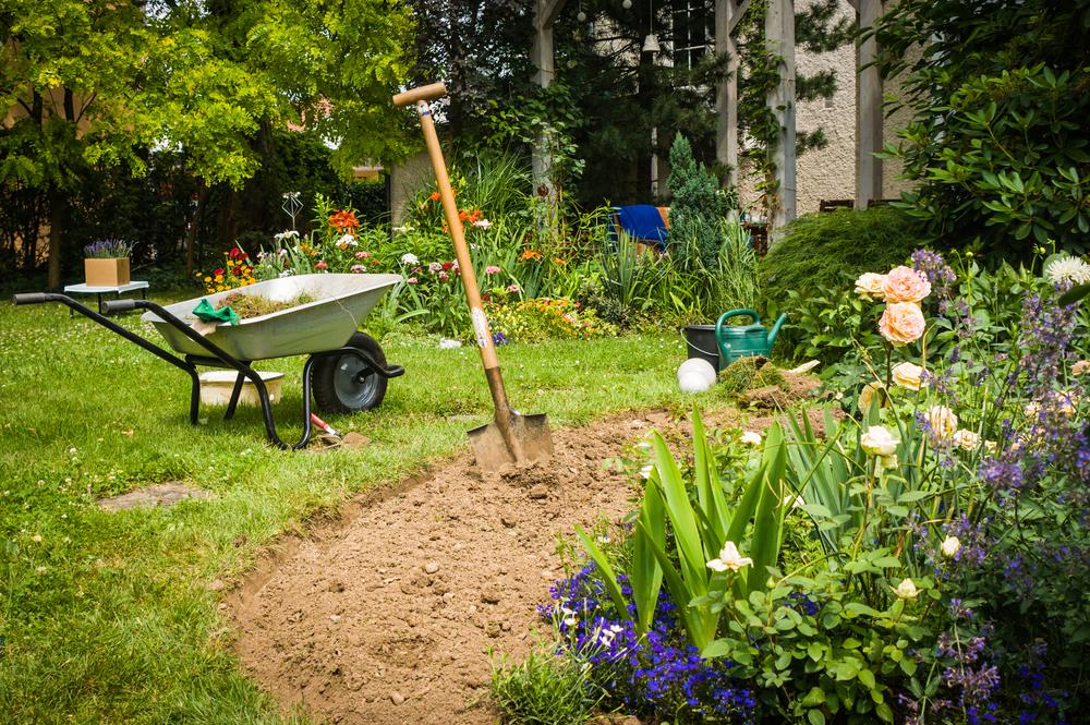 prepare flower bed