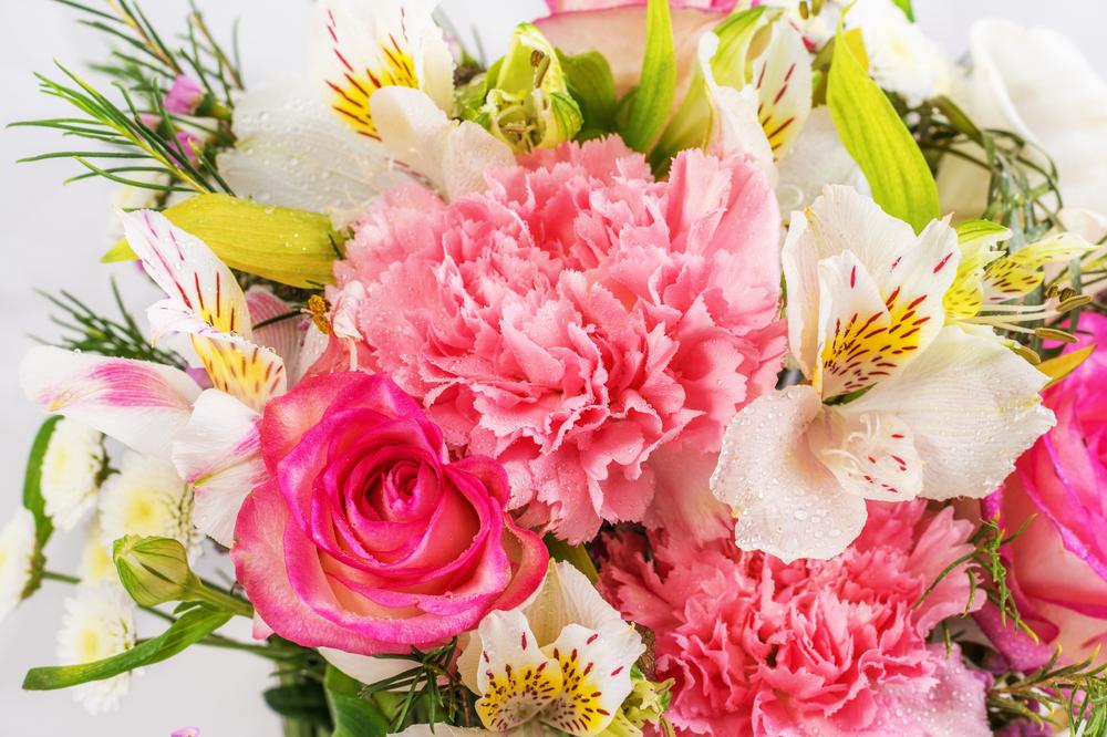 flower color scheme