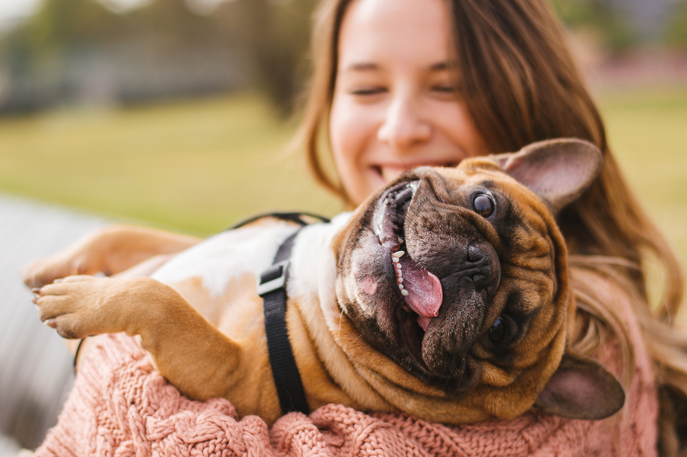 How to Keep Your Pet Happy & Healthy During the Holidays