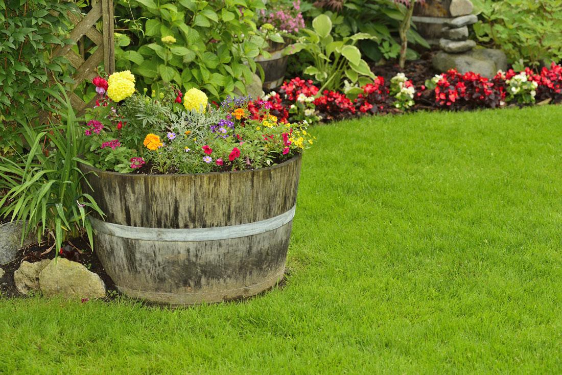 Get Gardening - cover