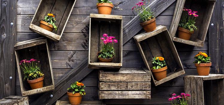2018 gardening trends