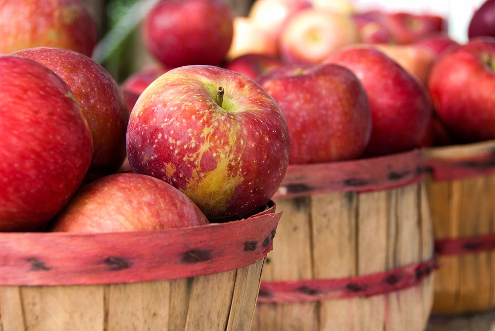 Apples are a great fall produce