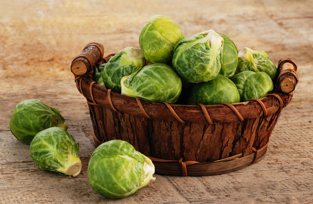 Brussels sprouts are at their best in the fall and winter.